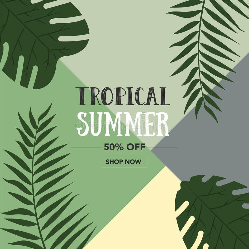 Beautiful Palm Leaf Tropical Bright Background. Minimal fashion summer concept stock illustration