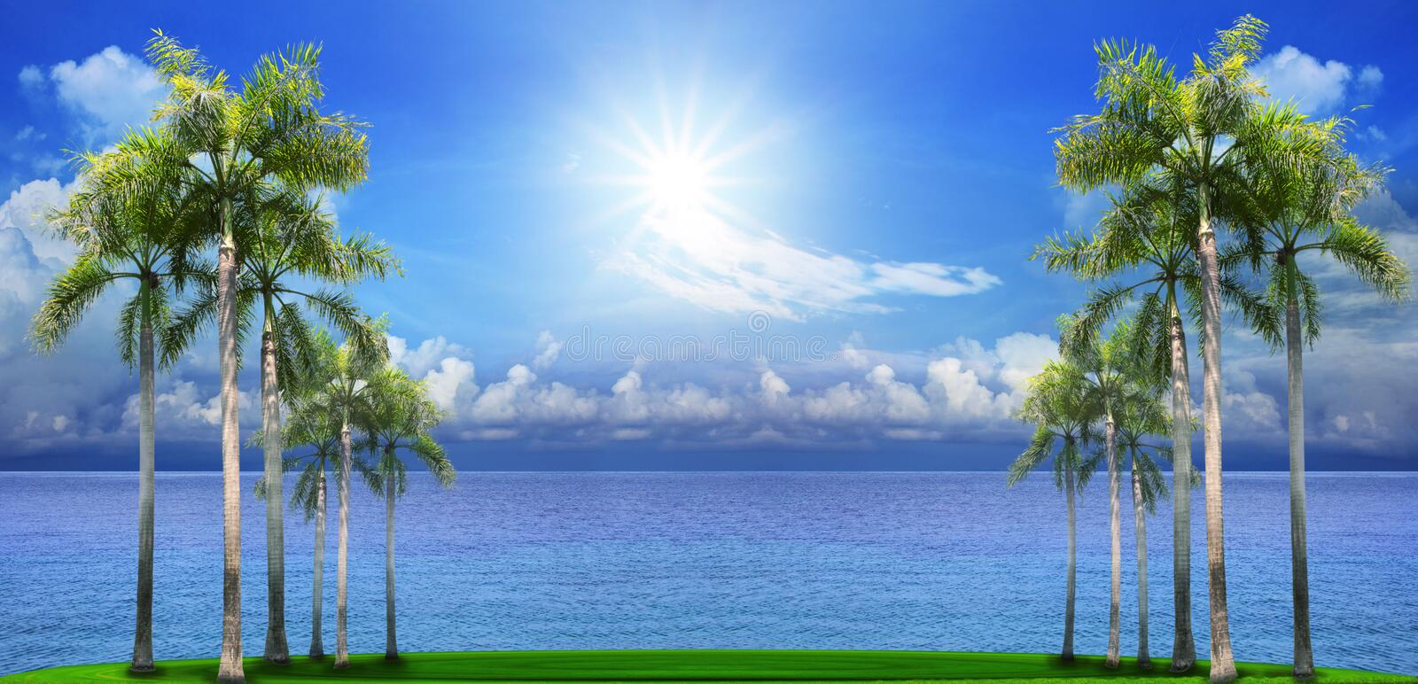 Download Beautiful Palm Tree On Green Field With Blue Sea Water Backgroun Stock Photos - Image: 31958753