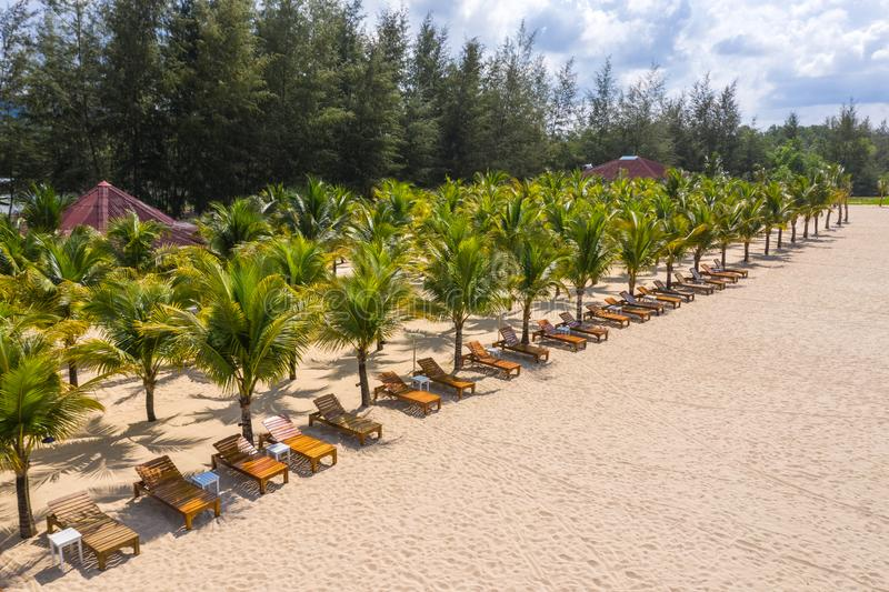 Beautiful palm trees and golden beach sand at relaxing resort stock photo