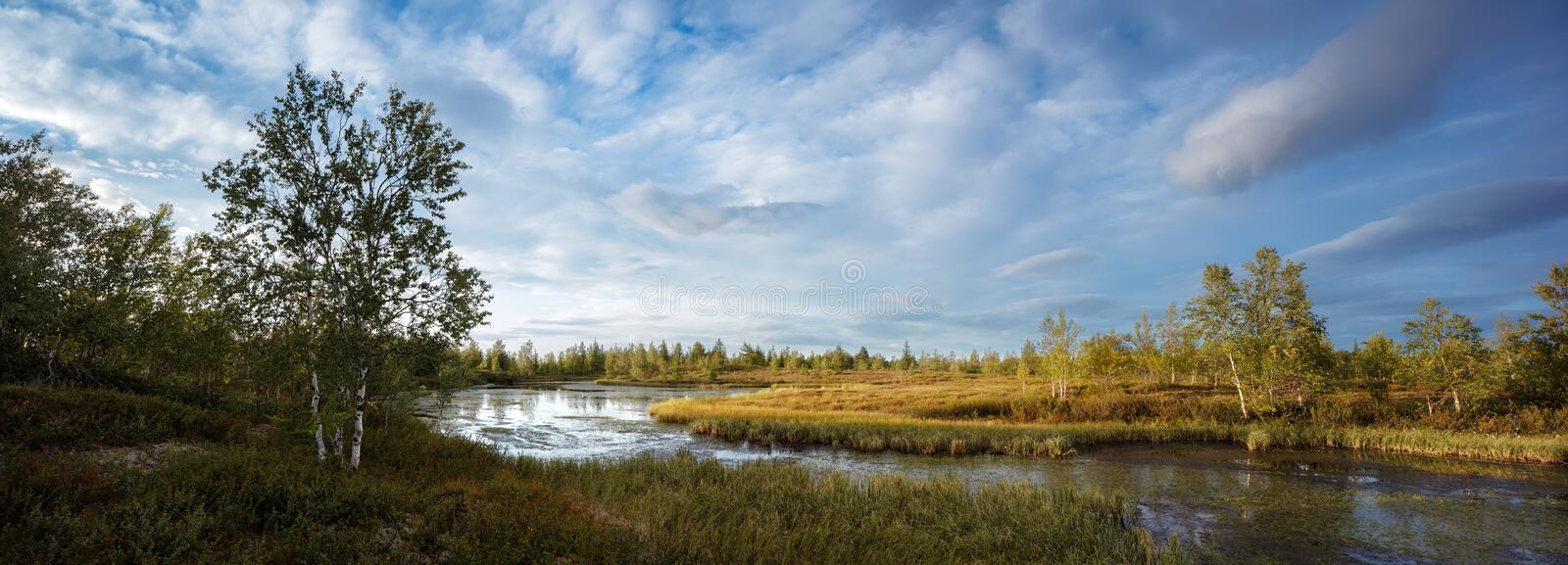 Beautiful panorama of landscape of lake in northern forest, high resolution for print. royalty free stock photo