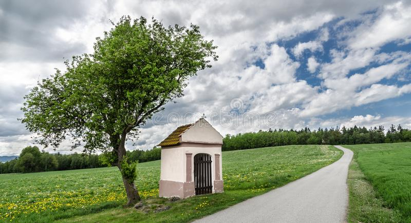 Chapel and alone tree in meadow with flowering spring dandelions. Taraxacum officinale stock photo