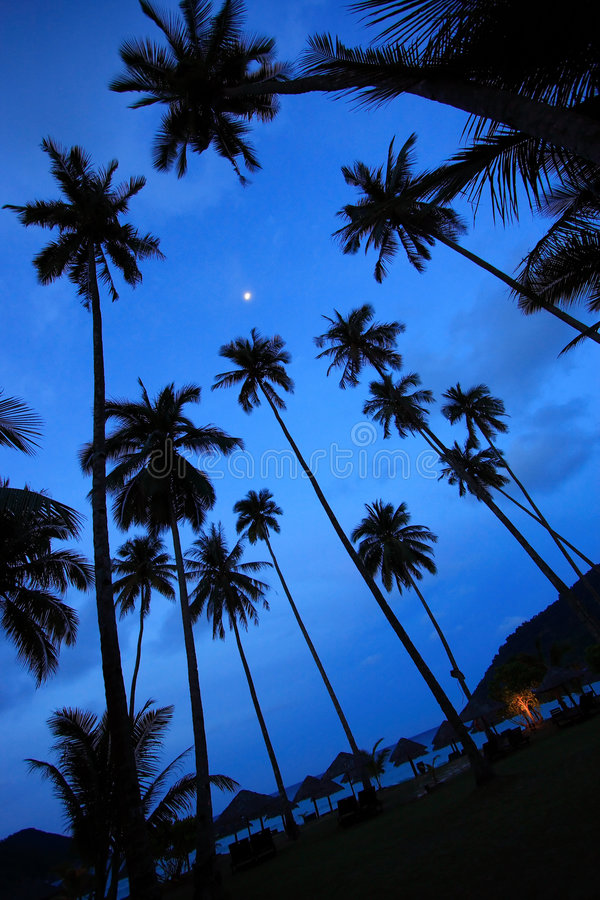 Beautiful Panorama at a Tropical Beach royalty free stock photos