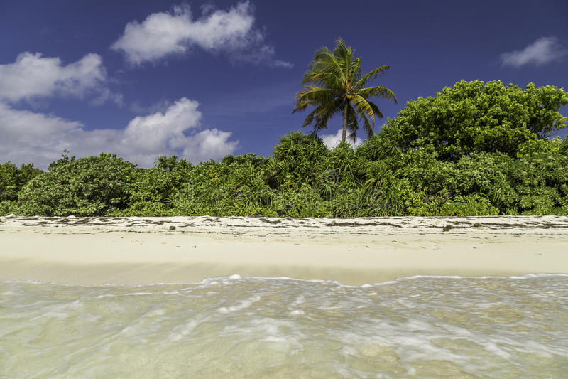 Beautiful panorama of tropical beach in Maldives royalty free stock image