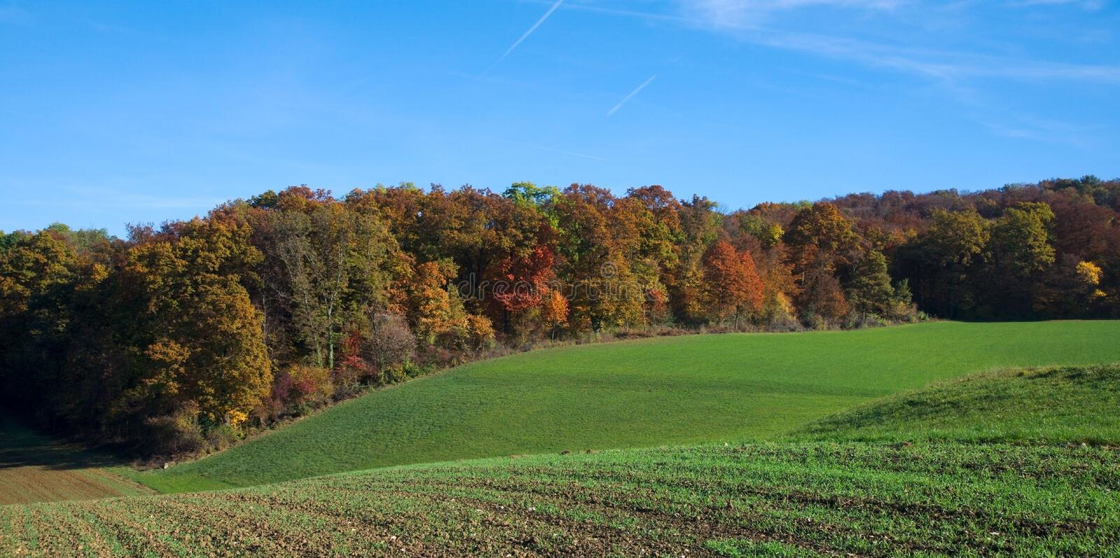 Beautiful panoramic autumn forest and green fields royalty free stock photos