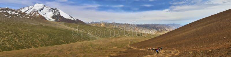 Beautiful panoramic landscape with Kang Yatze mountain and a donkey caravan from under Gongmaru La pass, Himalayas, Ladakh, India royalty free stock image