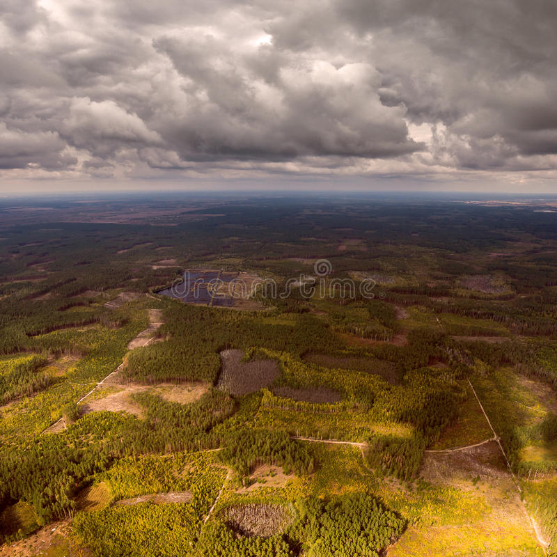 Beautiful panoramic photo of the forest right up to the horizon line. Aerial view. From above. Picture taken using the copter stock photography