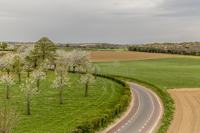 Beautiful panoramic view of an asphalt road between farm land, green grass and cherry trees blooming stock photos