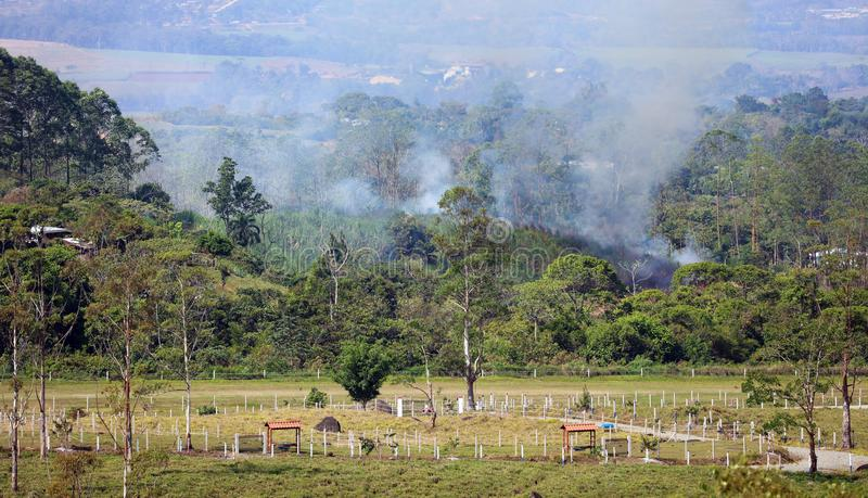 Beautiful panoramic view of farms and sugar cane fields burning in the mountains in Costa Rica with green jungle. During summer before harvest stock image