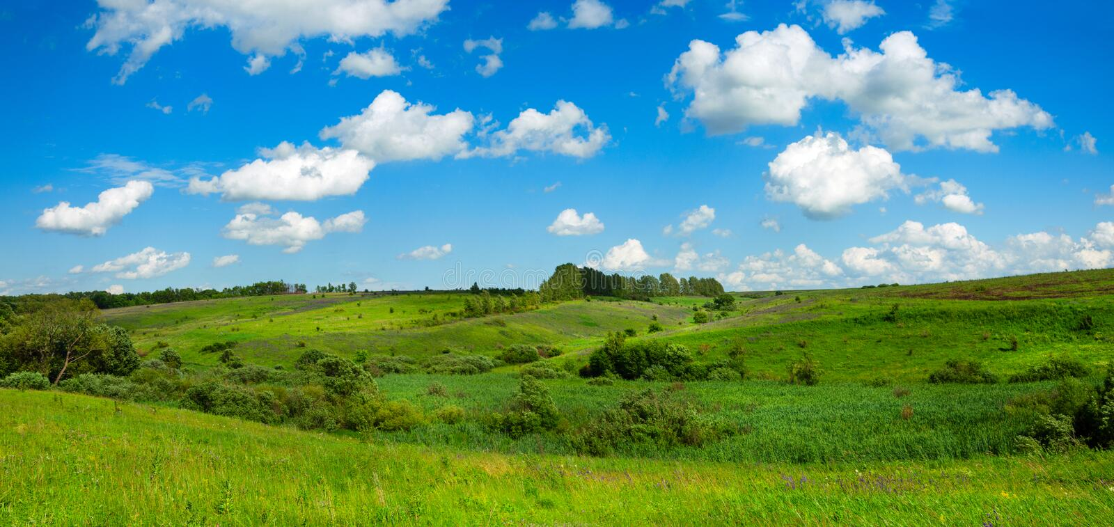 Sunny summer country landscape with green fields and amazing clouds in blue sky stock photo