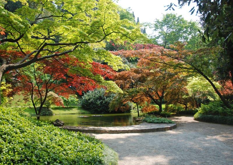 Beautiful park stock photos