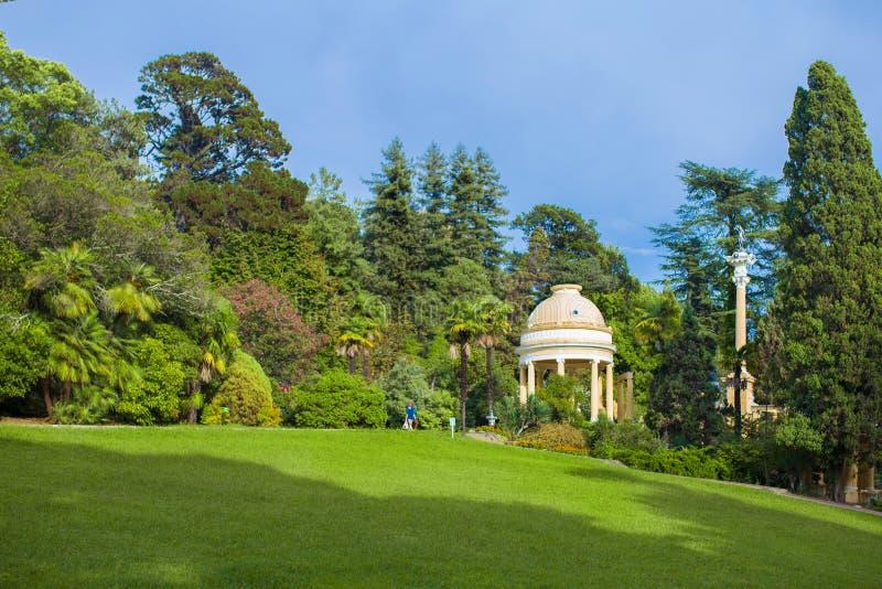 Beautiful park arboretum stock images