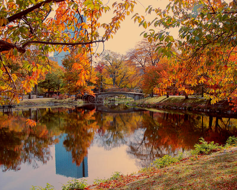 Beautiful park in Boston along the Charles River on an autumn day. stock photography