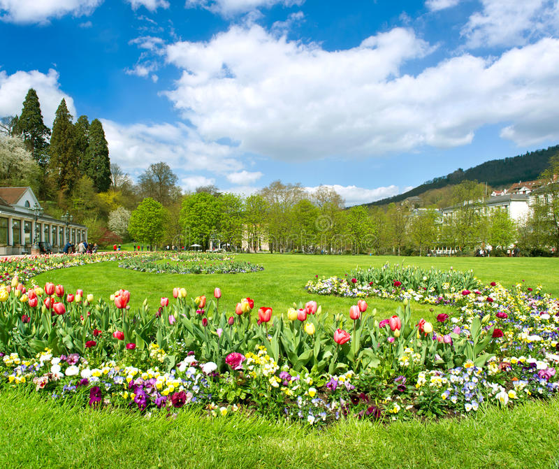 Beautiful park in spring with tulip flowers royalty free stock photo