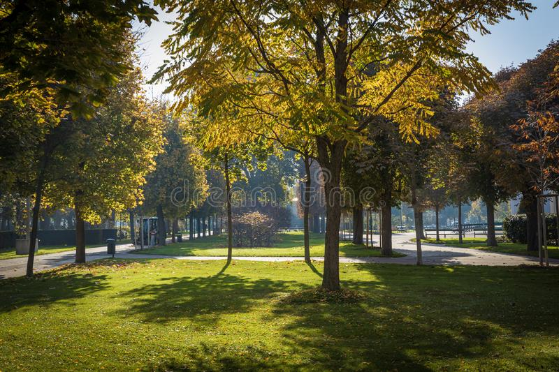 Beautiful park on a sunny day in autumn in Vienna royalty free stock images
