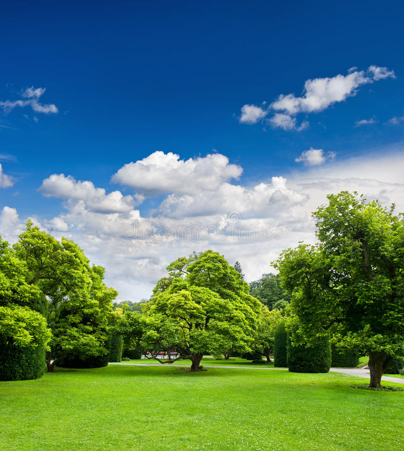 Download Beautiful Park Trees Over Blue Sky Stock Photo - Image: 21180146