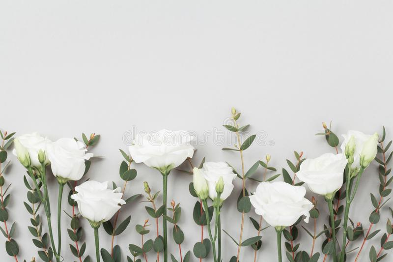 Beautiful pastel flowers and eucalyptus leaves on gray table top view. Floral border. Flat lay style. royalty free stock photography