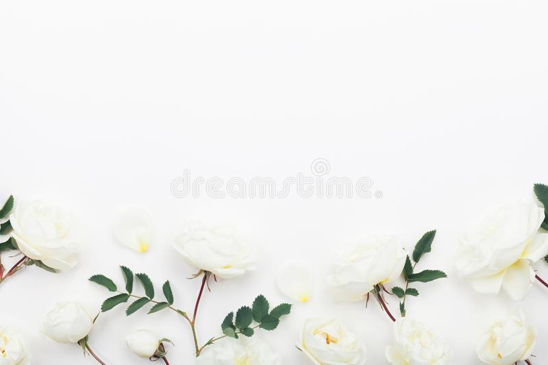 Beautiful pastel rose flowers and leaves on white table top view. Floral border. Flat lay style. royalty free stock images