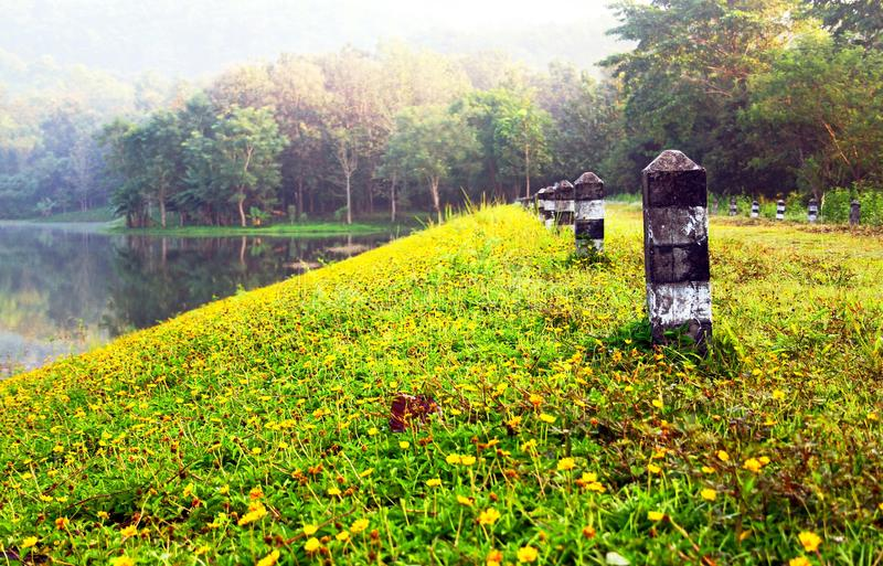 Beautiful pathway beside lake and flower with forest in the morning. At Jetkod-Pongkonsao Natural Study and Ecotourism Center, Saraburi, Thailand - Beauty of stock photography