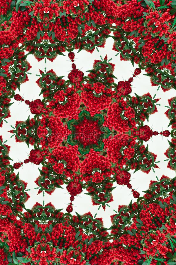 Kaleidoscope of red berries. Pattern, mandala royalty free stock photography