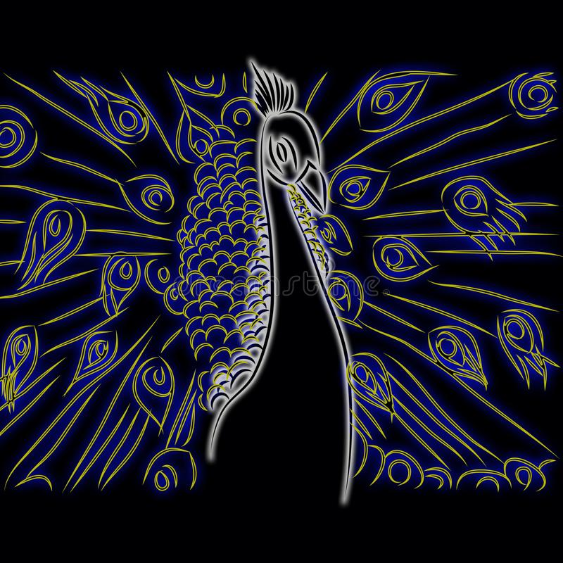 Beautiful peacock pattern black background royalty free illustration