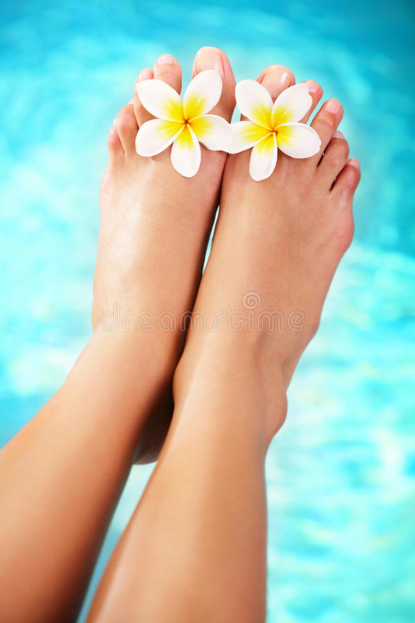 Beautiful pedicured female feet and tropical flowe royalty free stock photos