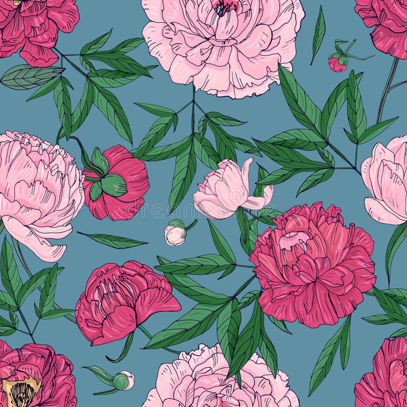 Beautiful peonies seamless pattern. Hand drawn blossom flowers, buds and leaves. Colorful vector illustration. vector illustration