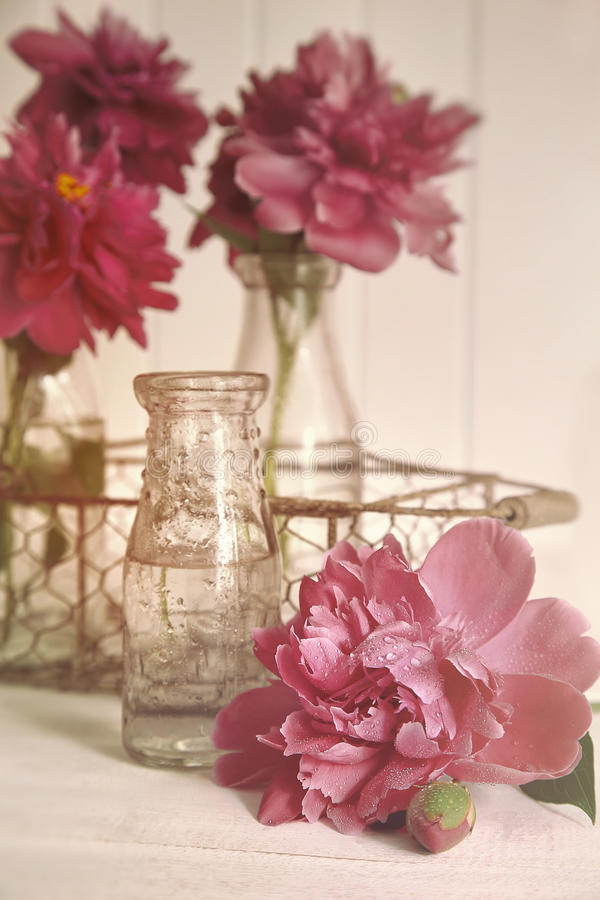 Beautiful peony flowers with bottles on table stock photo