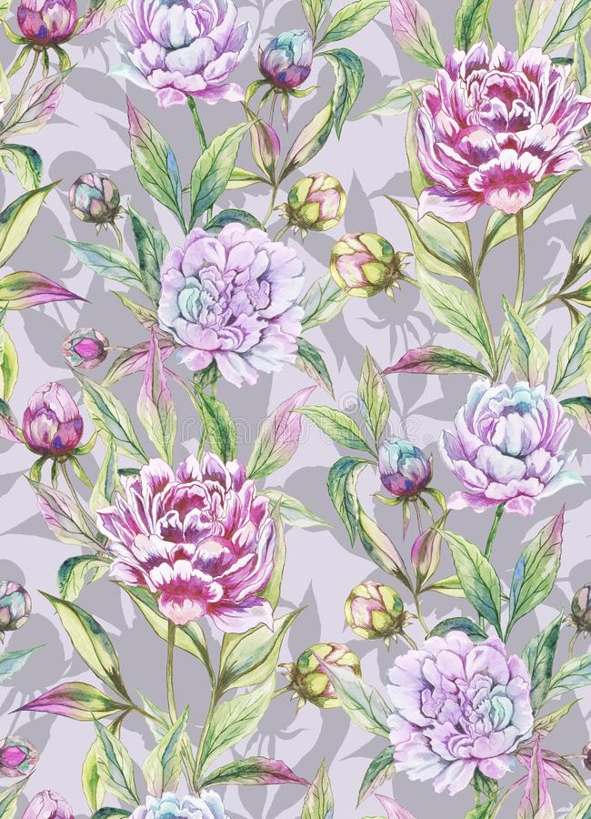 Beautiful peony flowers with buds and leaves in straight lines on light gray background. Seamless floral pattern. Watercolor painting. Hand drawn illustration royalty free illustration