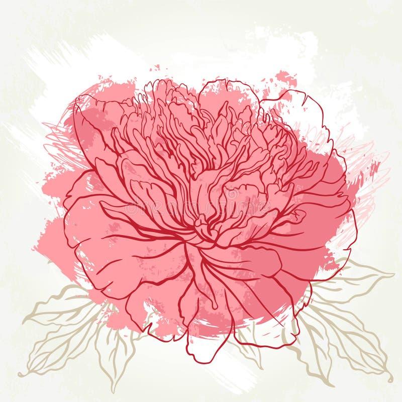 Beautiful peony greeting card design royalty free illustration