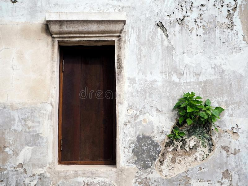 The Wooden Window and the Old Wall stock image