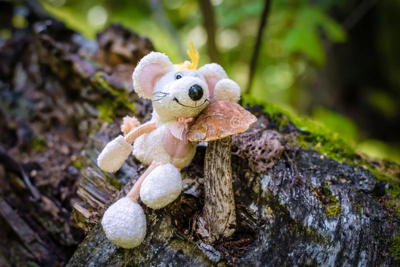 Birch mushroom in the forest, with a toy mouse-the symbol of 2020. A beautiful picture with a birch mushroom in the forest, with a toy white cute mouse-the royalty free stock photos