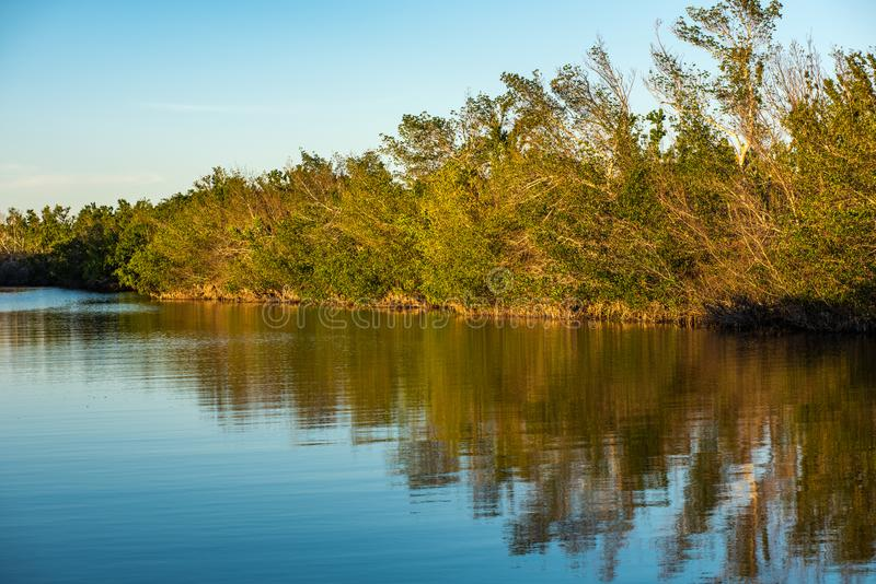 Everglades National Park in Florida. Beautiful picturesque and sunny and tranquil day at Everglades National Park in Homestead, Florida. Everglades National royalty free stock photo