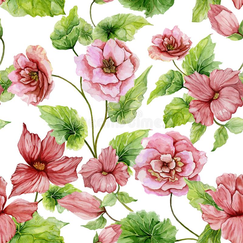 Beautiful pink begonia flowers with leaves on white background. Seamless floral pattern. Watercolor painting. Hand painted botanical illustration. Wallpaper royalty free illustration