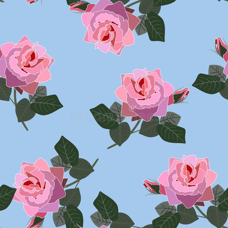 Beautiful pink blooming isolated rose flowers on sky blue background. Vintage seamless floral pattern in vector. Print for fabric.  royalty free illustration