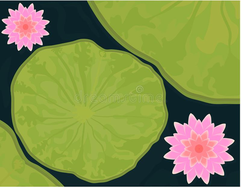 Beautiful Pink 3D lotus flower with green leaf in dark blue water vector illustration with reflection shadow and gradient stock illustration