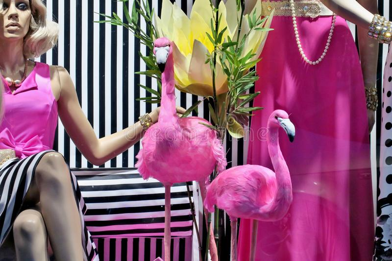 Beautiful pink flamingos with a mannequin in fashionable clothes behind the shop window. Close up royalty free stock photography
