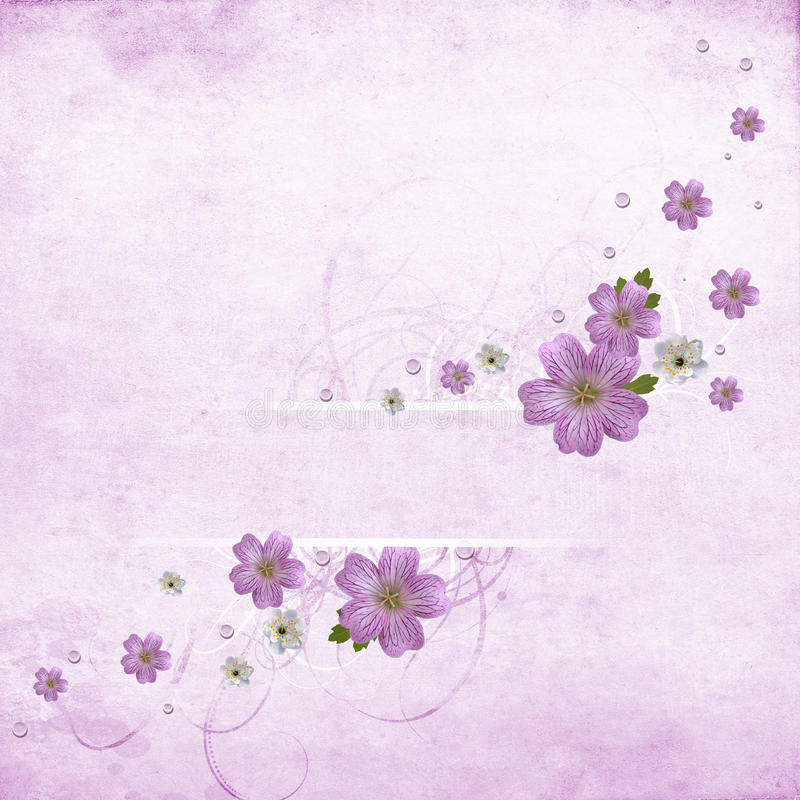Beautiful Pink Floral Banner Stock Images