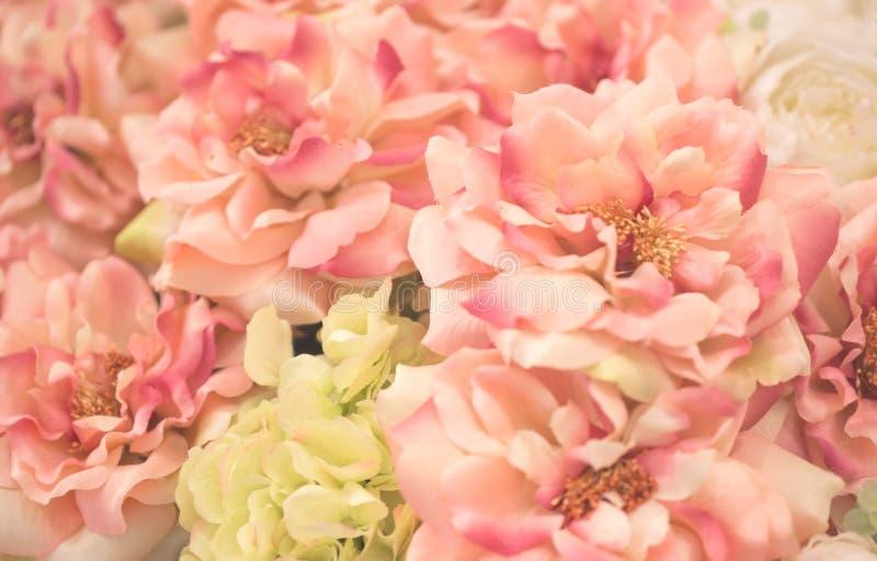 Beautiful pink flower background. stock image