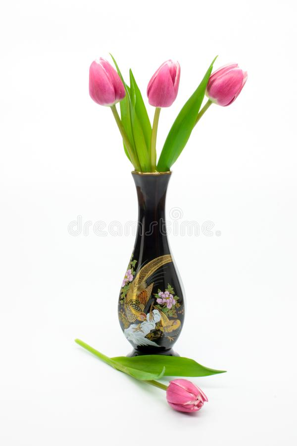 Pink tulips flowers in an elegant vase isolated on white royalty free stock photography