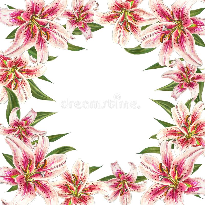 Beautiful pink lily border frame. Bouquet of flowers. Floral print. Marker drawing. vector illustration