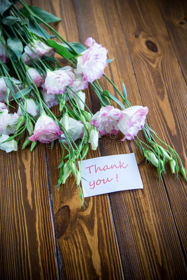 Beautiful pink lisianthus flowers on wooden table. Beautiful pink lisianthus flowers on wooden background stock photo