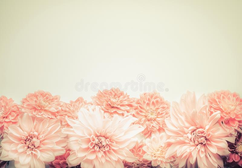 Beautiful pink pastel flowers on beige background, top, border. Lovely greeting card or invitation for wedding, Mothers day. Or happy event stock photo