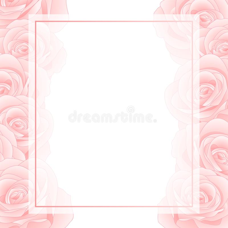 Beautiful Pink Rose Banner Card Border - Rosa isolated on White Background. Valentine Day. Vector Illustration vector illustration