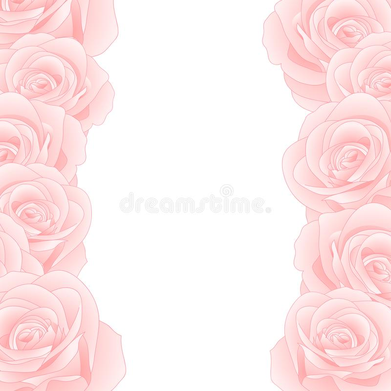 Beautiful Pink Rose Border - Rosa isolated on White Background. Valentine Day. Vector Illustration vector illustration