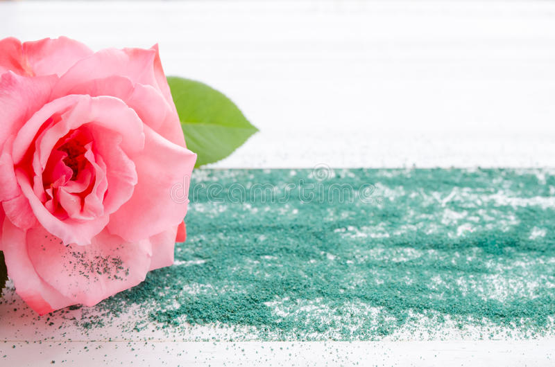 Beautiful pink rose with green sand on a white wooden background royalty free stock photos