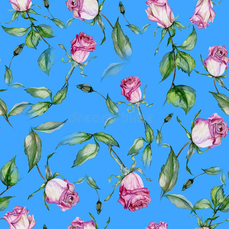 Beautiful pink roses and green leaves on blue background. Seamless floral pattern. Watercolor painting. Beautiful pink roses on stems with green leaves on blue vector illustration