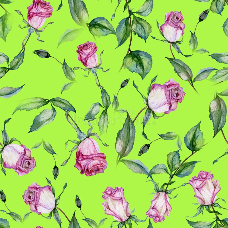 Beautiful pink roses and green leaves on bright lemon green background. Seamless floral pattern. Watercolor painting. Beautiful pink roses on stems with leaves vector illustration