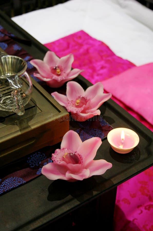Beautiful pink spa royalty free stock photography