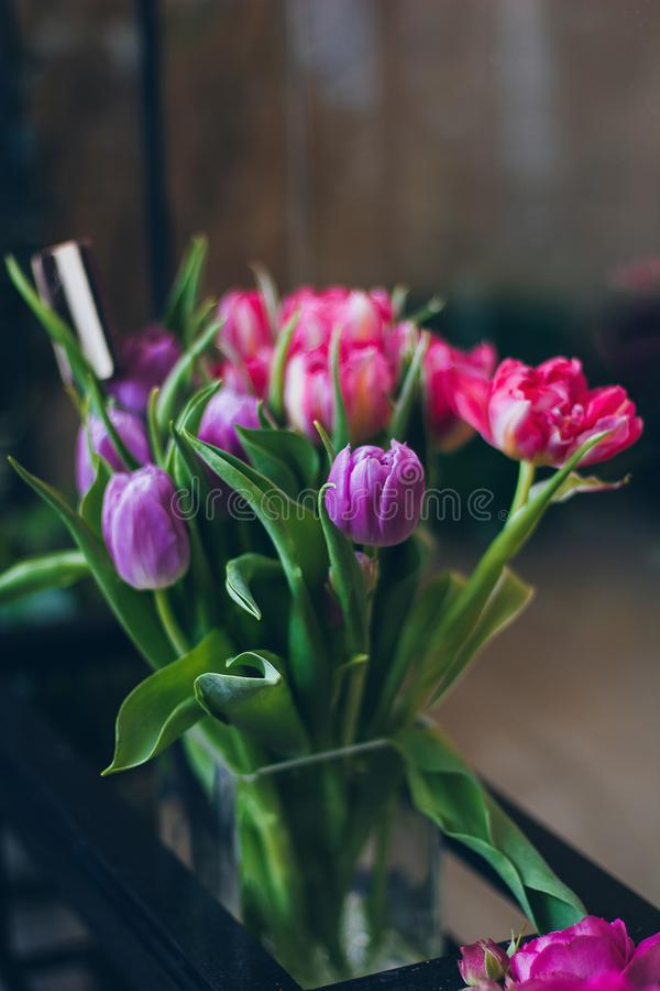 Beautiful pink and violet tulips in vase stock images
