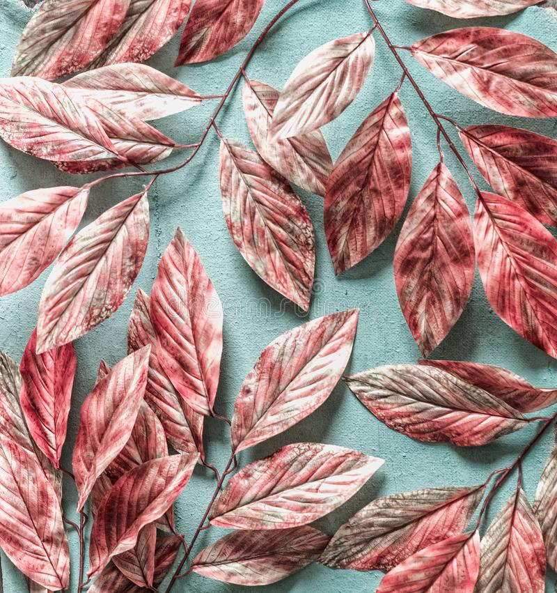 Beautiful pink white tree leaves pattern on pastel blue background , top view, flat lay stock photography